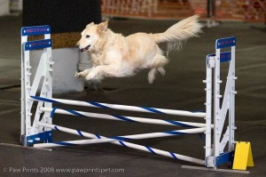 Abby Jumping