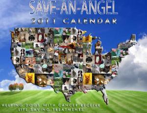 Save an Angel Calendar