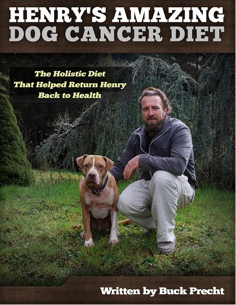 Henry S Amazing Dog Cancer Diet