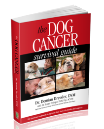 Cover of The Dog Cancer Survival Guide